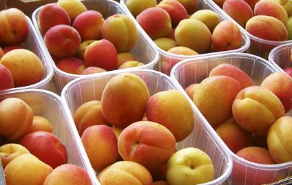 Nos puedes encontrar en el Mercado Agroecológico en HUESCA