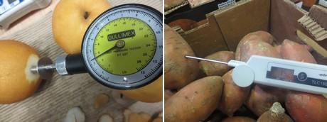 Fruit Connection, inspectores de calidad «Alrededor del 30% de las frutas y hortalizas se pierde en la poscosecha»