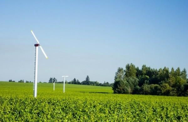 «Una máquina de viento protege 7 hectáreas contra las heladas nocturnas»
