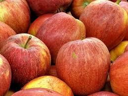 La campaña de manzana empieza con mejores precios y alta demanda de exportación