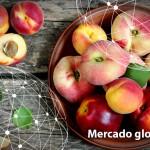 Resumen del mercado global de la fruta de hueso